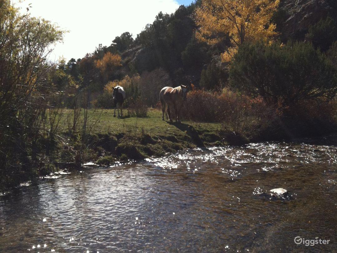 Cundiyo, New Mexico streamside farm with cabin Photo 4