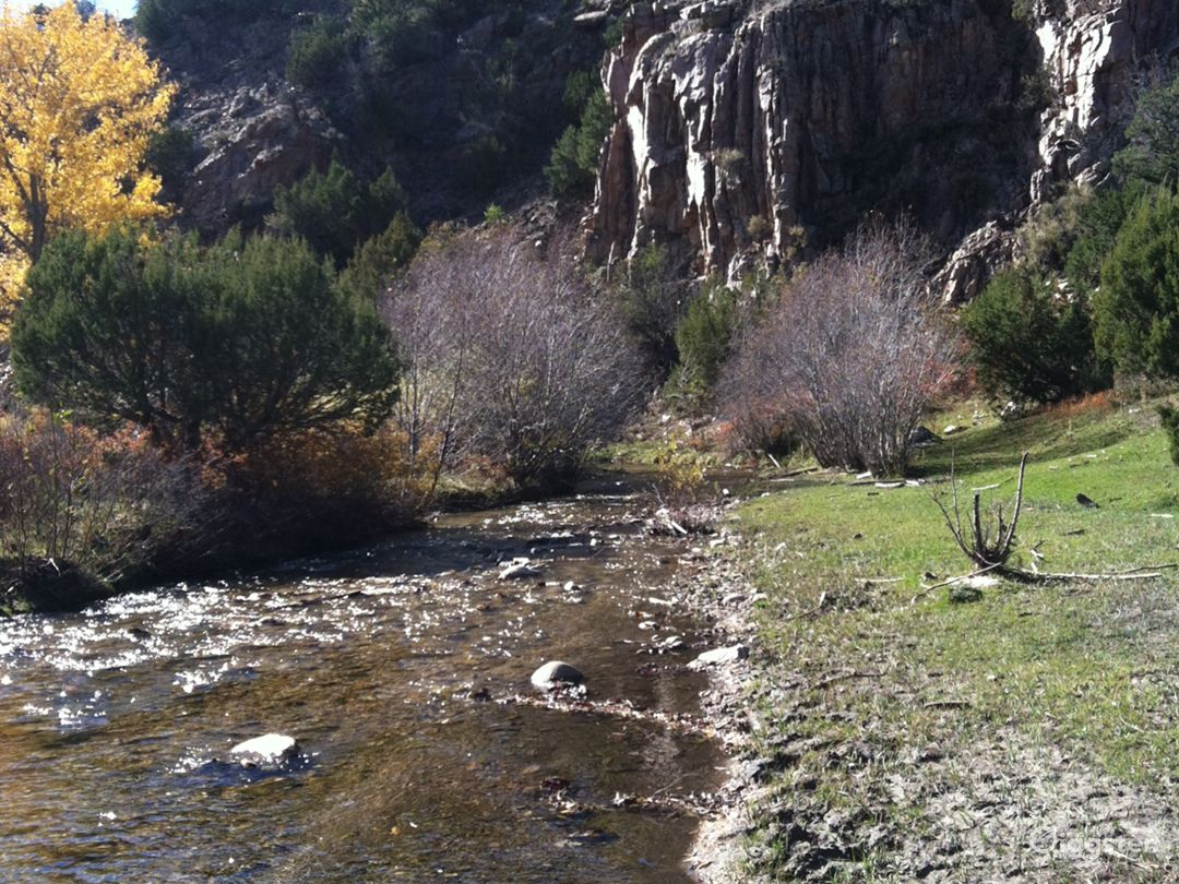 Cundiyo, New Mexico streamside farm with cabin Photo 5