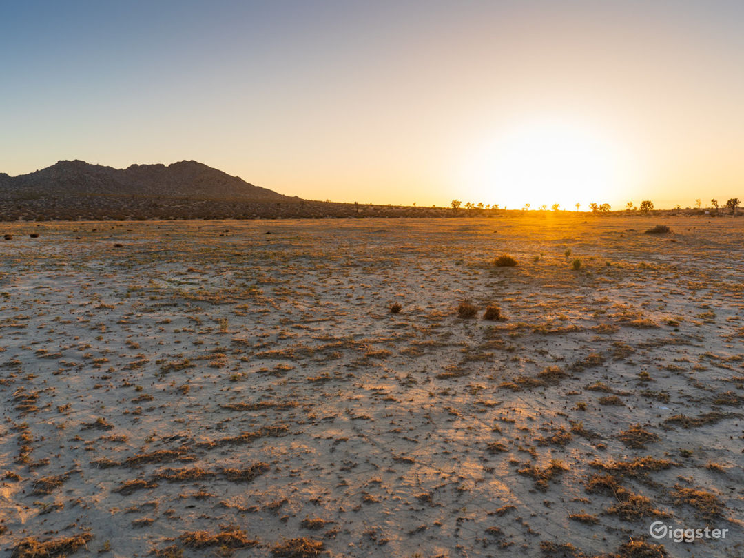 10-Acre Flat Desert Land with Parking Photo 4