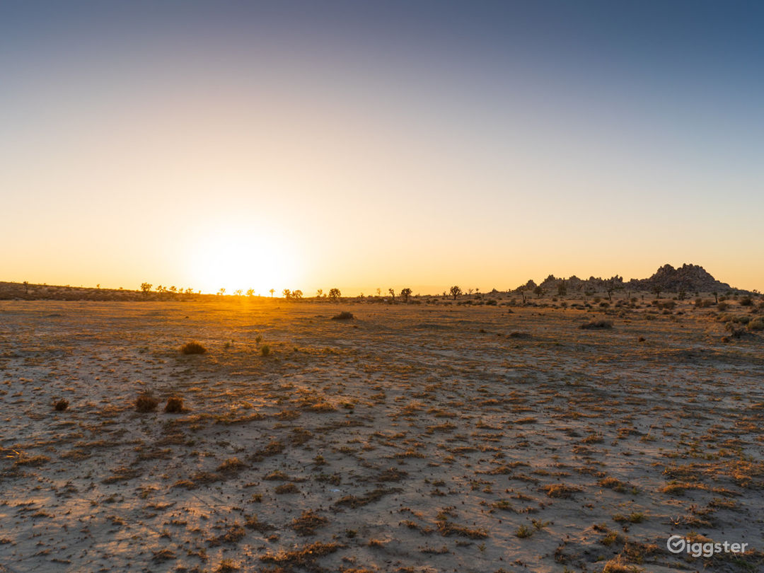 10-Acre Flat Desert Land with Parking Photo 5
