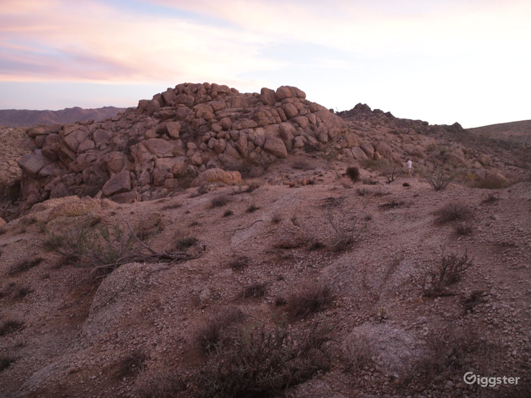 Joshua Tree Boulders Photo 1