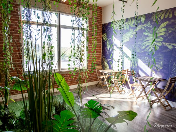 The Solar Gardens - Tropical Rainforest/Jungle Photo 5