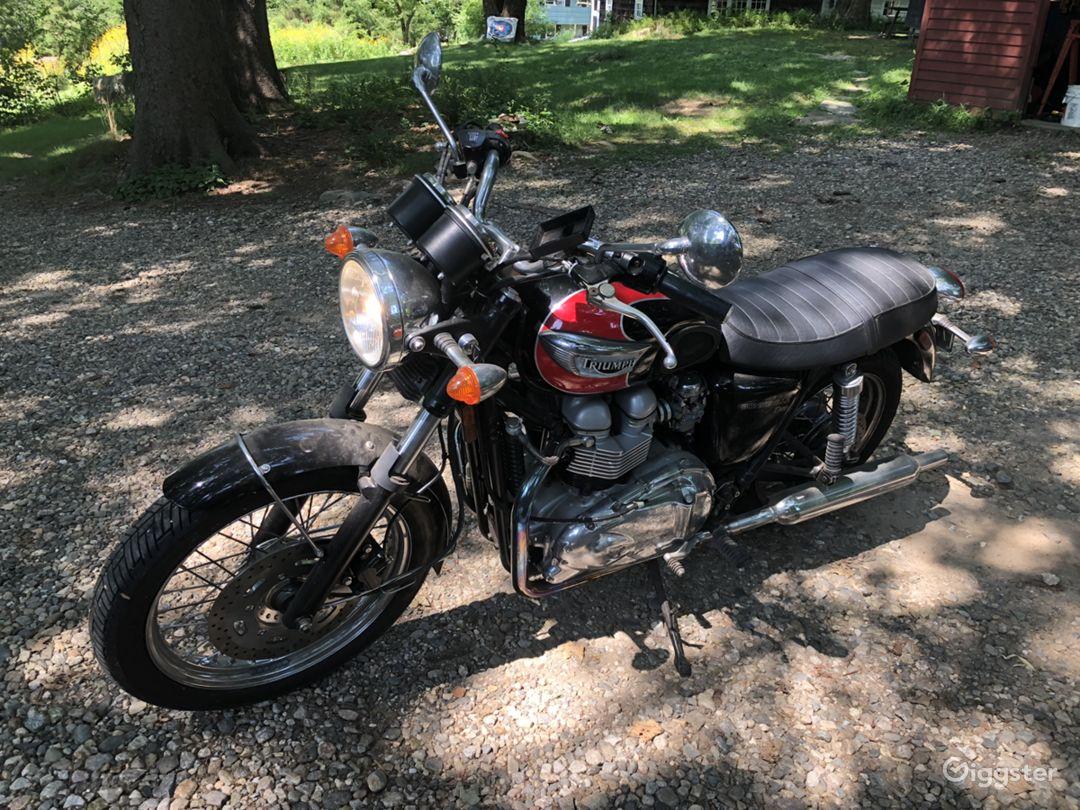 2003 Triumph T100 Photo 1