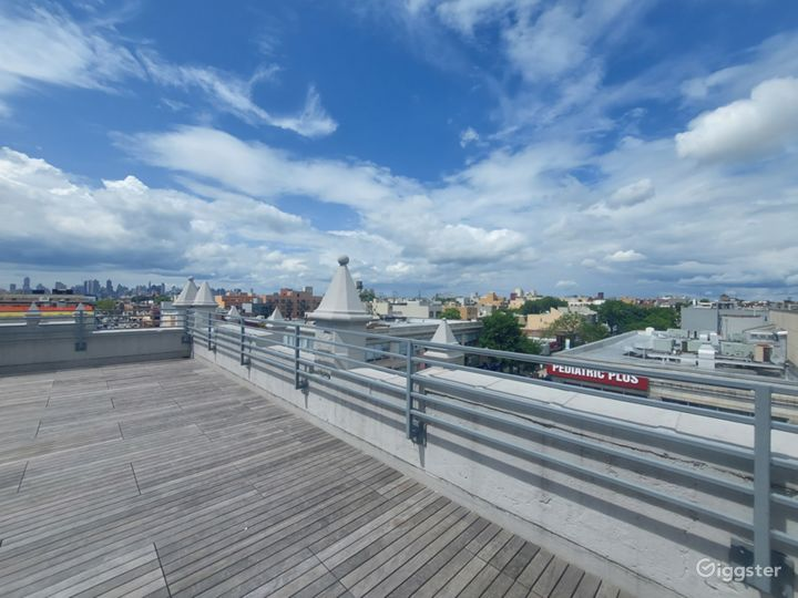 Amazing Rooftop with Skyline View  Photo 4