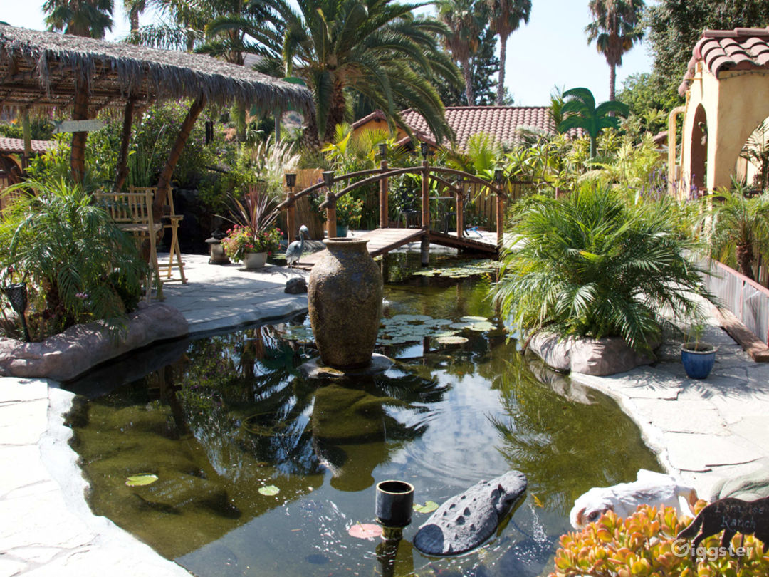Pet Ranch with several pools and Spanish style Photo 1