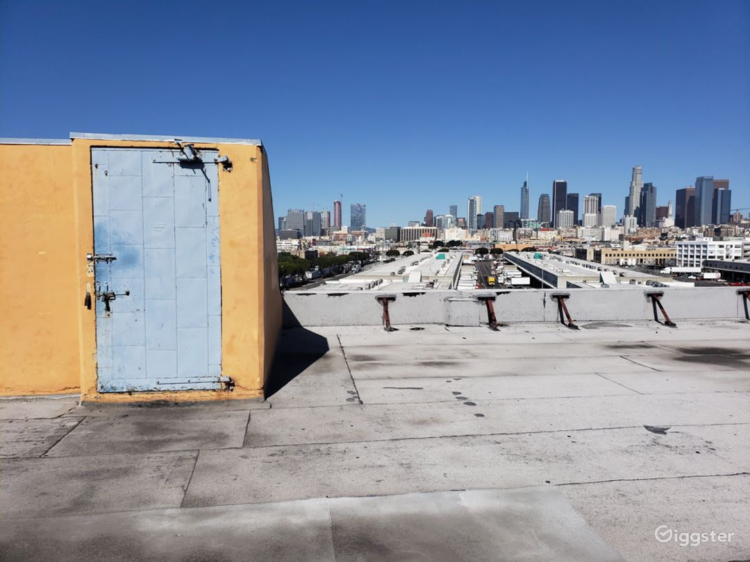 Rooftop View DTLA Skyline