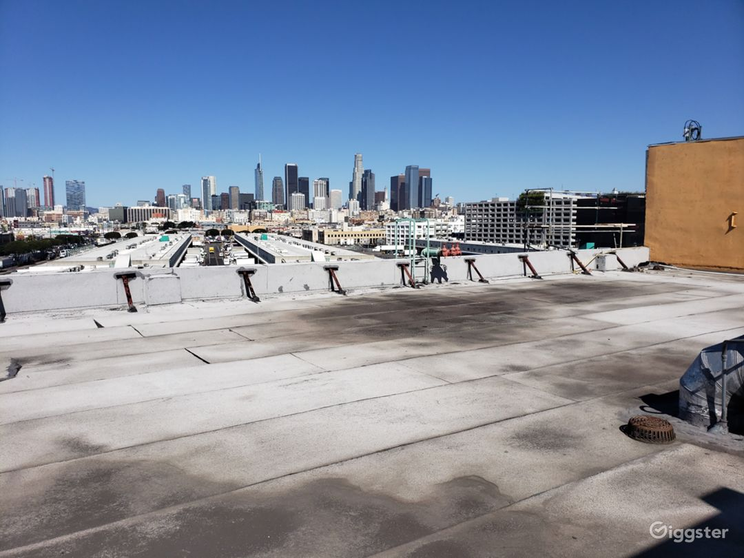 Rooftop View with DTLA Skyline