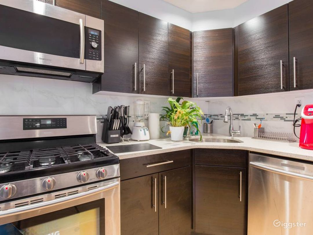 Beautiful, luxurious apartment in Clinton Hills Photo 2