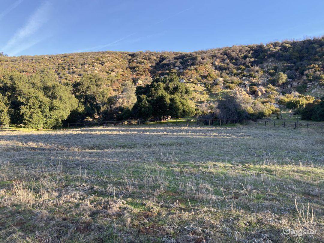 Smoky Tree Ranch  Photo 3