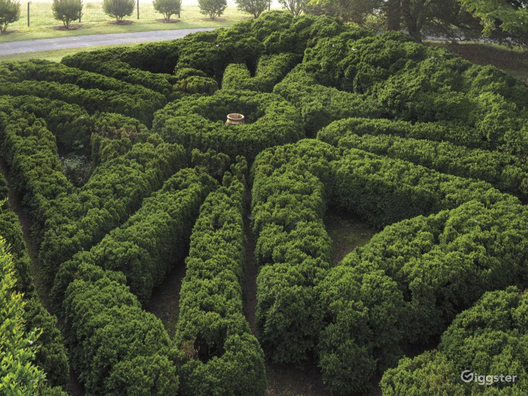 Historic and Authentic Antebellum Plantation  Photo 4