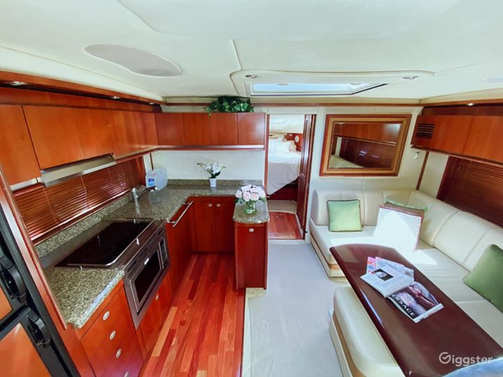 Superb 51FT SEA RAY Party Yacht Space Events Photo 3