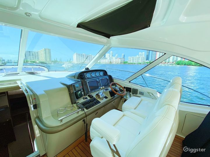 Superb 51FT SEA RAY Party Yacht Space Events Photo 2