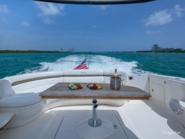 Top of the Line 55' SEA RAY SUNDANCER  Party Yacht Space Events Photo 3