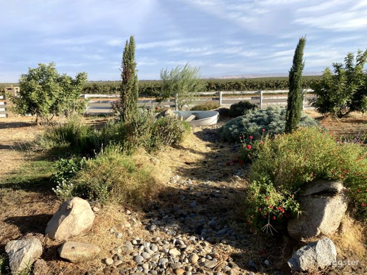 Rustic Outdoor Space in Madera Photo 2