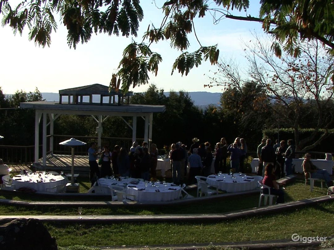 Breathtaking Mountain View Vineyards in Santa Cruz Photo 1