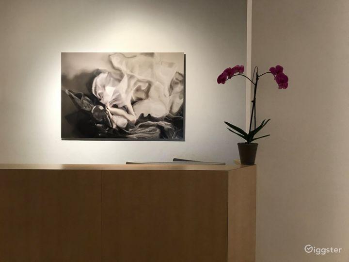 Classy & Elegant Gallery in Chicago Photo 2