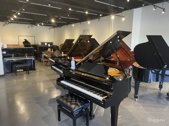 Spacious, light-filled, luxury piano store, Tempe Photo 5