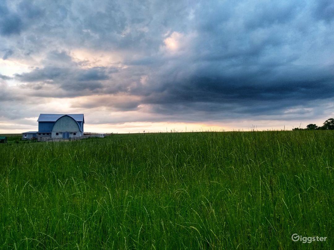 Rural horse farm Photo 1