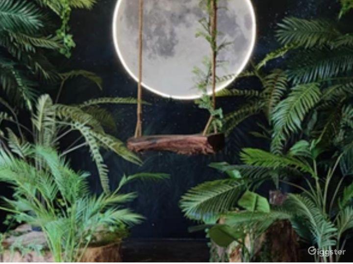 Luna Flora Photography Studio Set