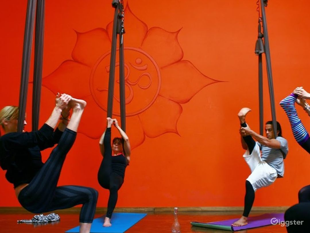 aerial , aerial yoga and dance studio, option for 9 aerial points