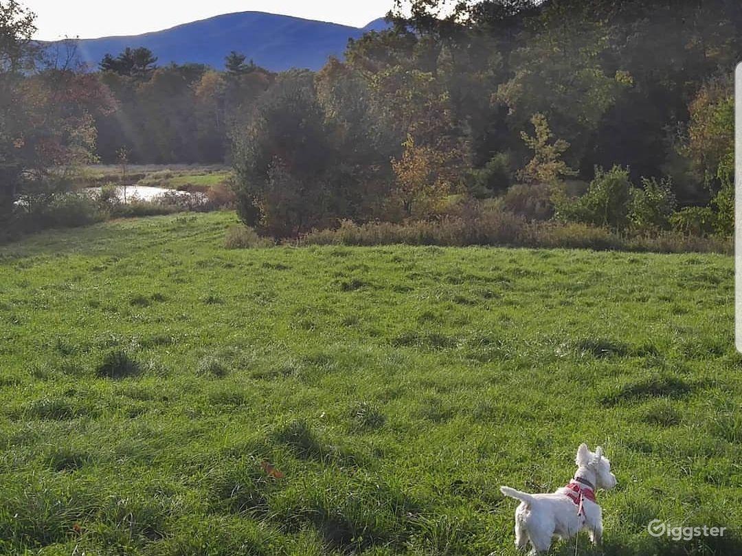 Open Fields, Two Ponds
