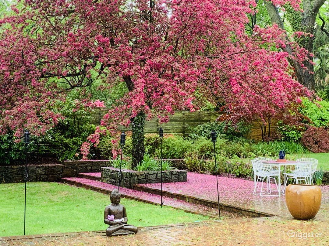 Backyard in the Spring