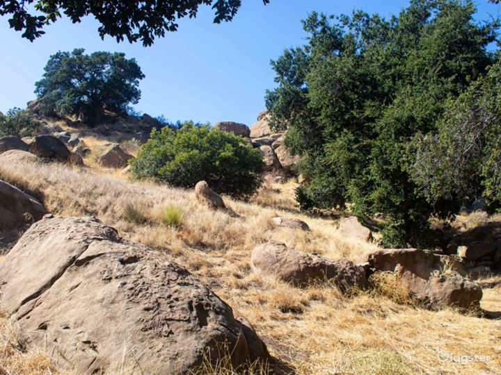 Oaks and boulders on hill