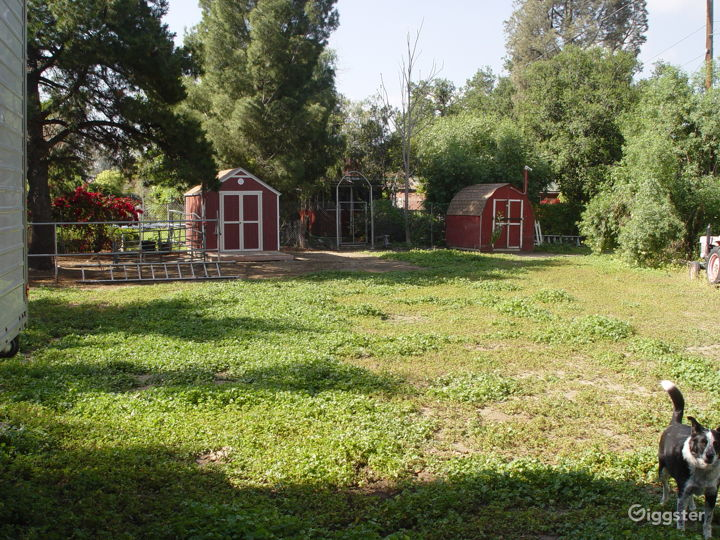 1913 Mini Ranch With Miniature Horses, Guest House & Theater