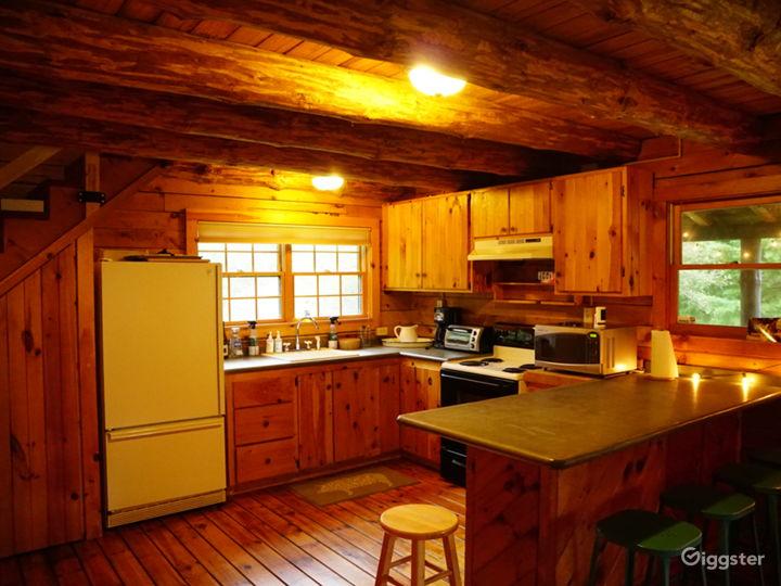 Super charming Rural Cabin in Northern Catskills Photo 5