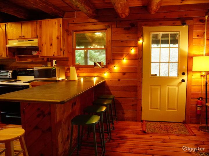 Super charming Rural Cabin in Northern Catskills Photo 3