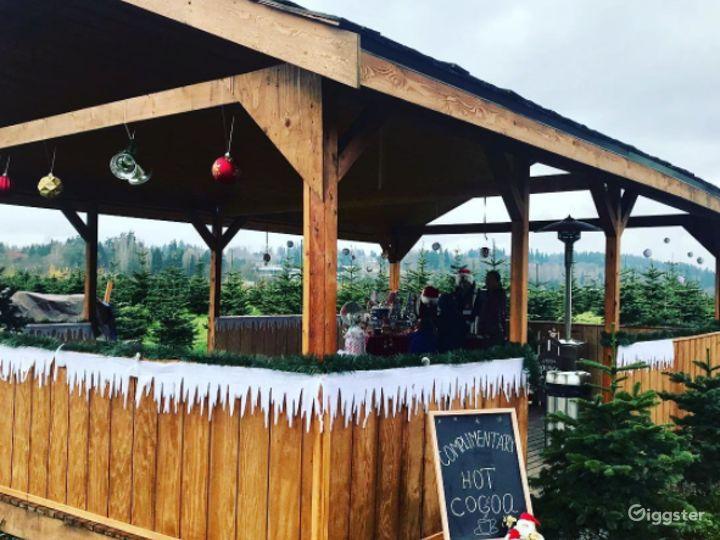 Christmas Tree Farm in Redmond Photo 5