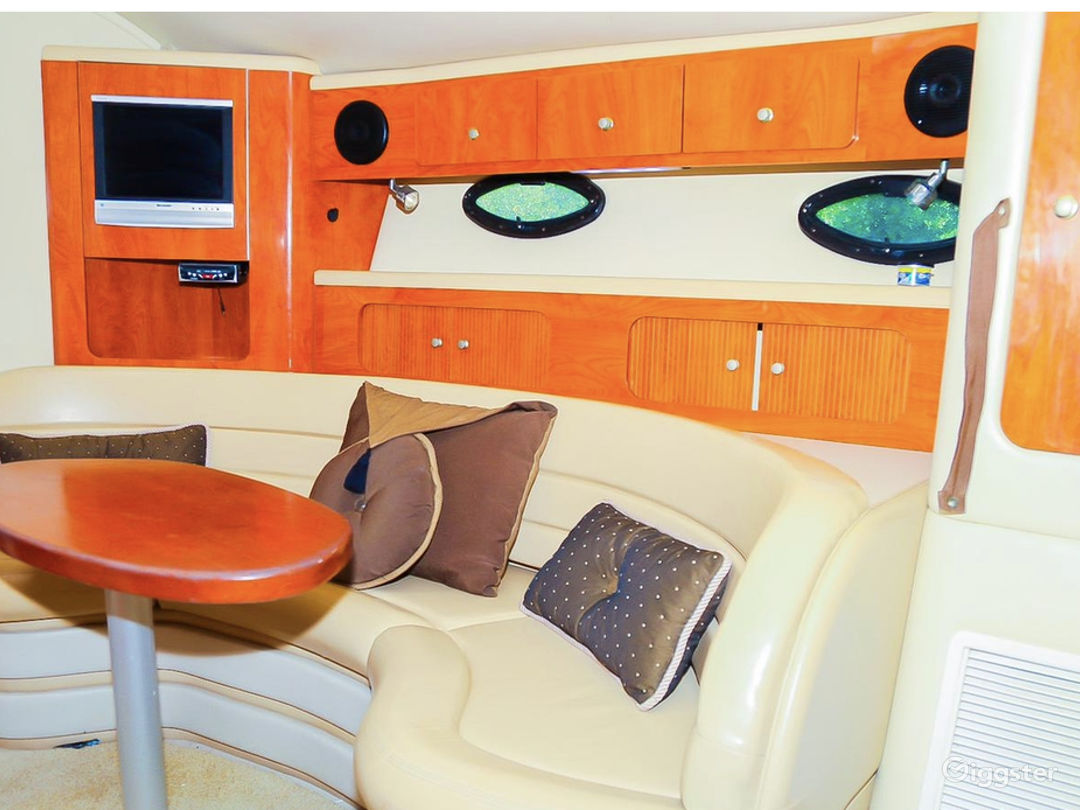 Astonishing 40FT Larson Duffy's Party Yacht Space Events Photo 1