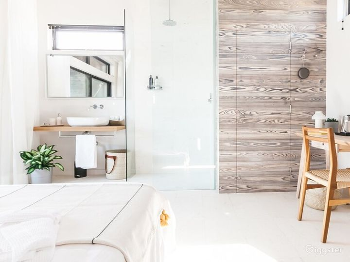 Sustainable Minimalist Designer Encinitas Home - Buyout Photo 4