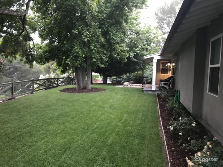 Side view of front yard.