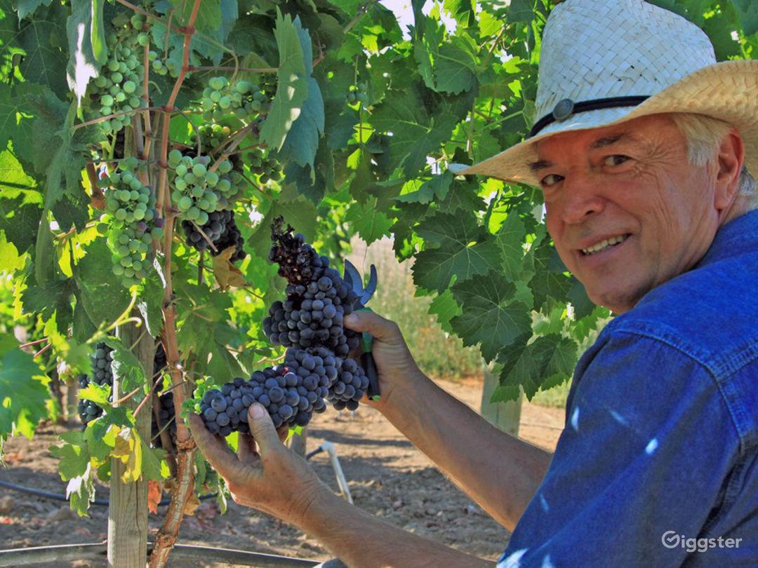 Rustic Farm & Winery in Ramona Photo 1