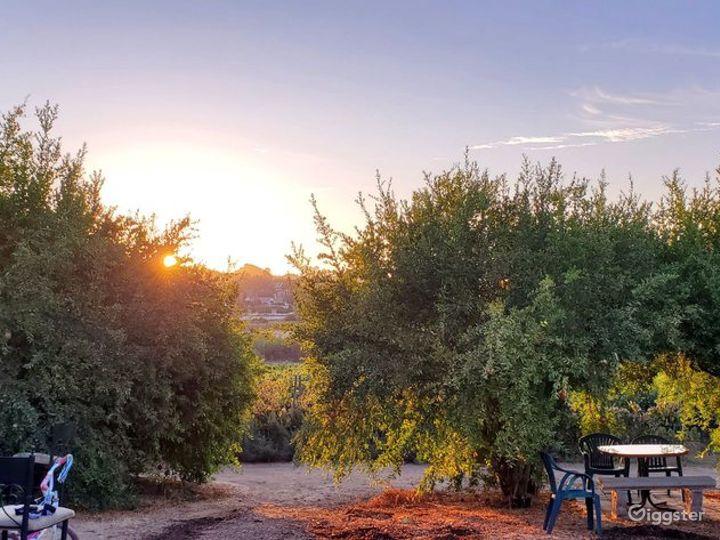 Rustic Farm & Winery in Ramona Photo 5
