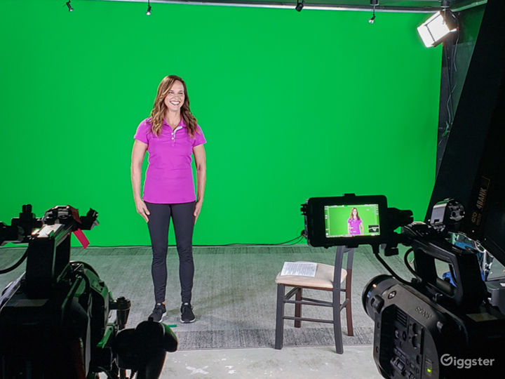 Studio with Green Screen and Sound Baffles Photo 4