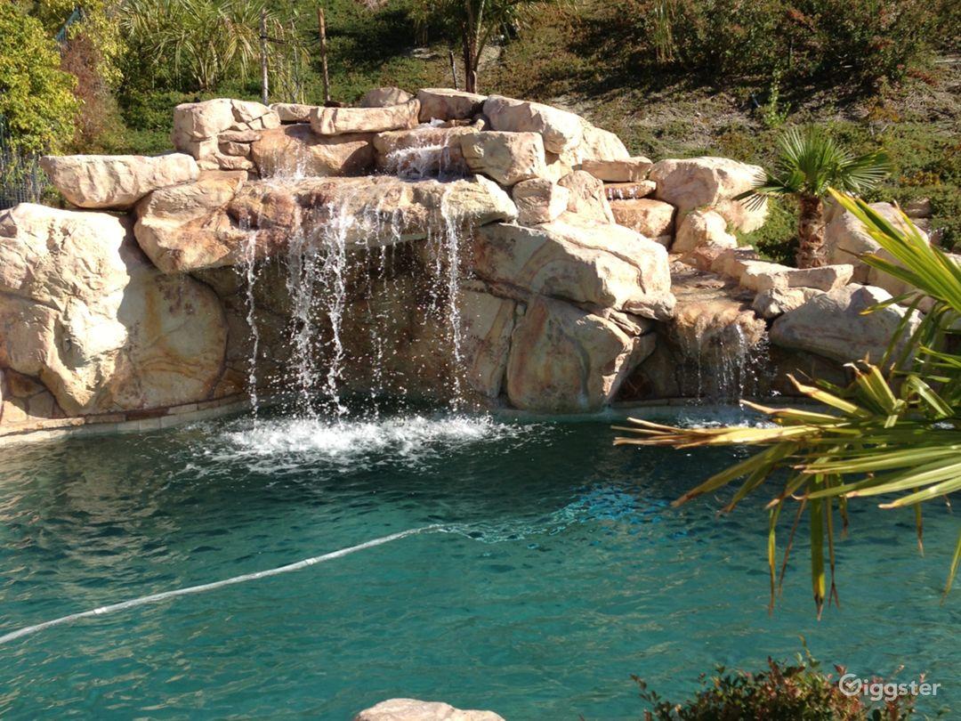 Backyard Pool Paradise  Photo 4