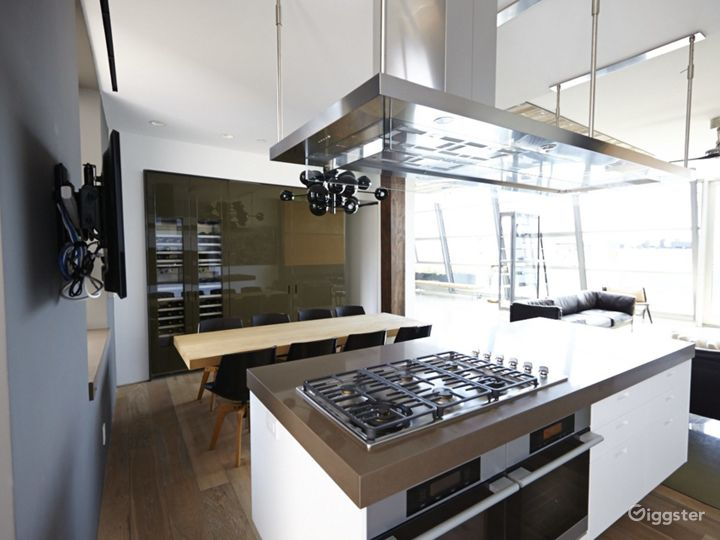 Upscale NY duplex penthouse: Location 4176 Photo 5