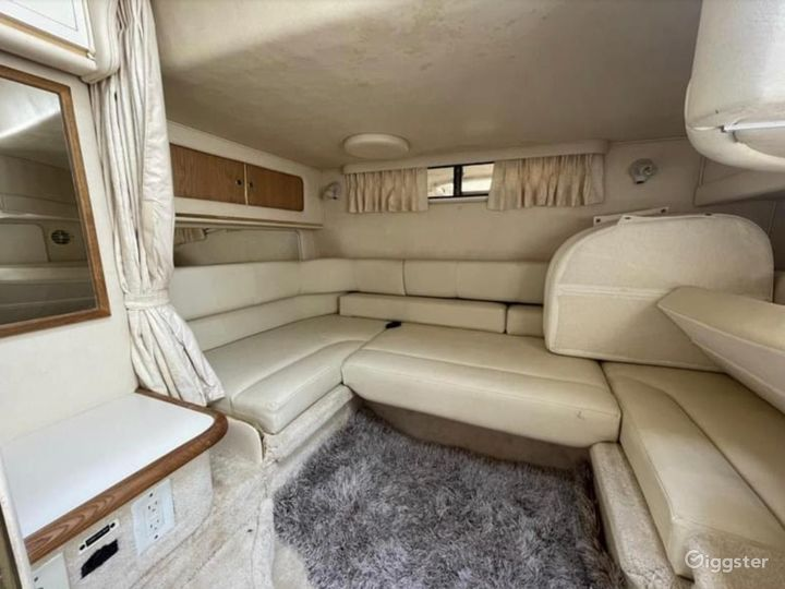 Gorgeous 34FT Sea Ray Sea Isle #1 Party Boat Space Events Photo 4