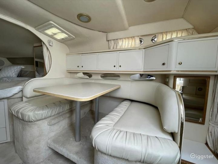 Gorgeous 34FT Sea Ray Sea Isle #1 Party Boat Space Events Photo 2