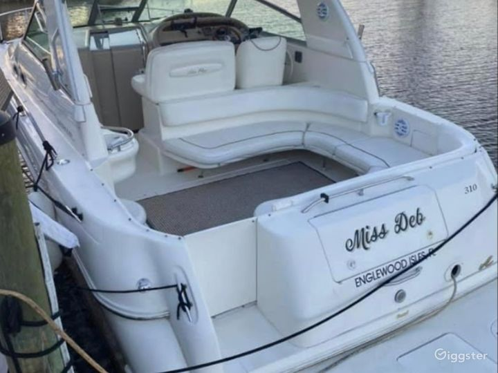 Gorgeous 34FT Sea Ray Sea Isle #1 Party Boat Space Events Photo 5