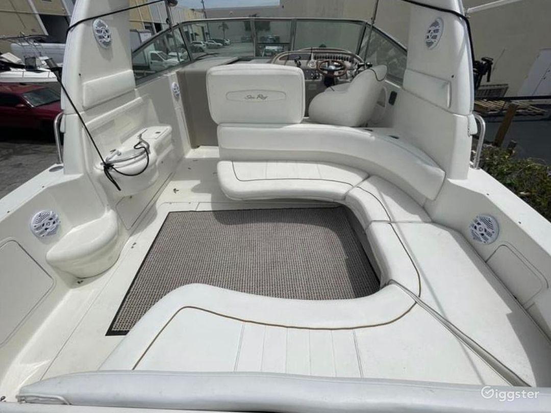 Gorgeous 34FT Sea Ray Sea Isle #1 Party Boat Space Events Photo 1