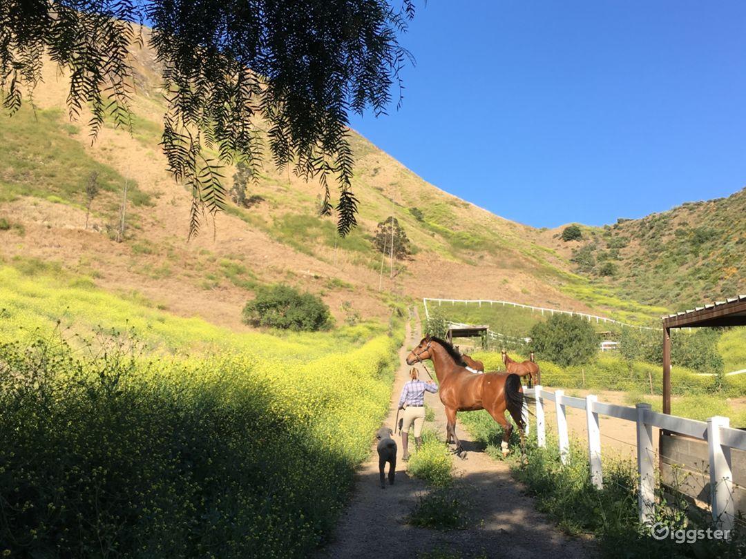 Upscale horse farm+ Rugged terrain + 2 avail homes Photo 1