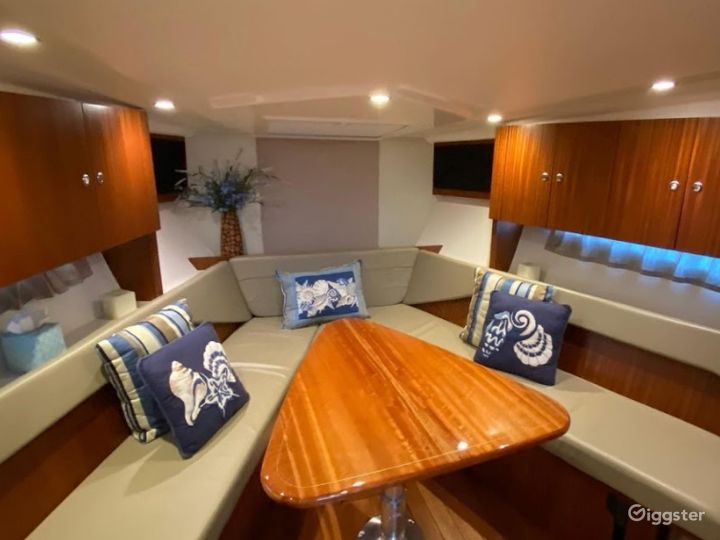 Sporty 36ft Pursuit SC Party Boat Space Events