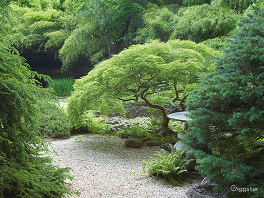 Japanese inspired  gardens: Location 5236 Photo 1