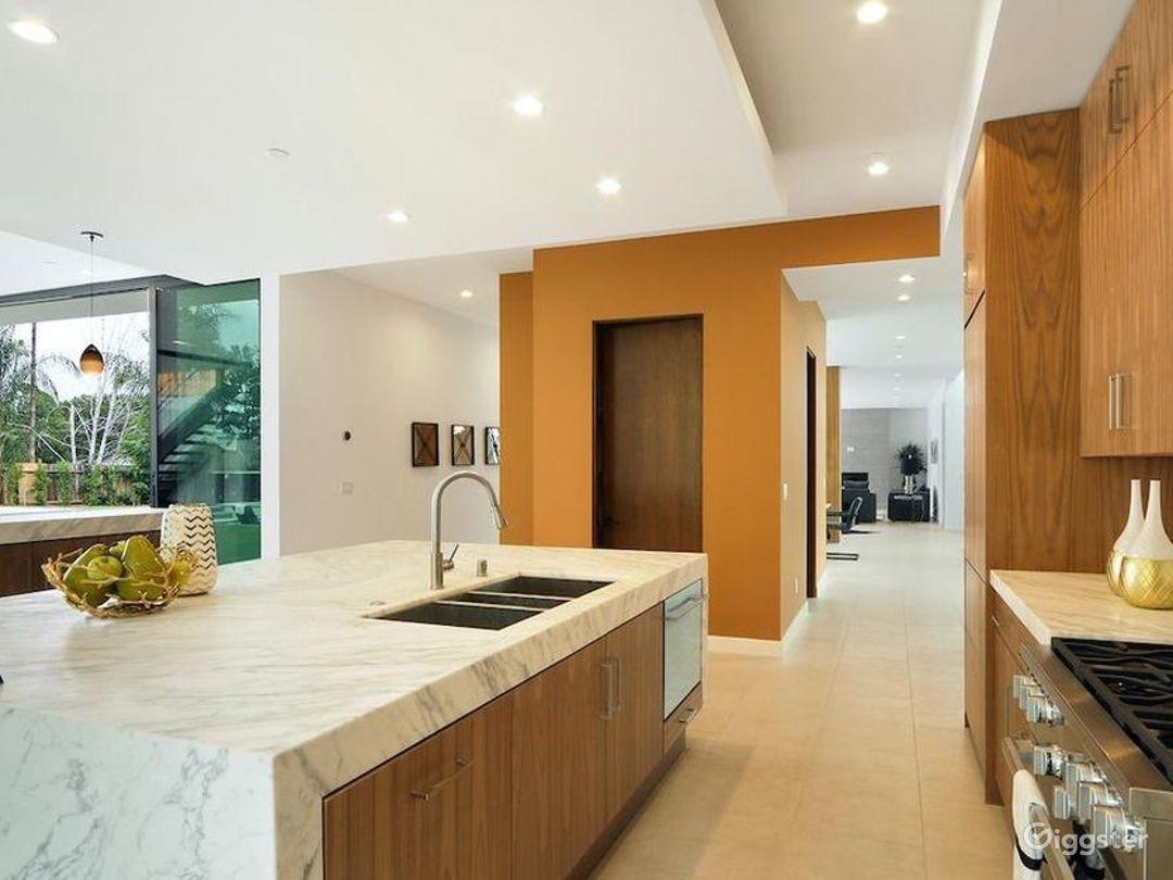 Designer Modern Mansion  Photo 3