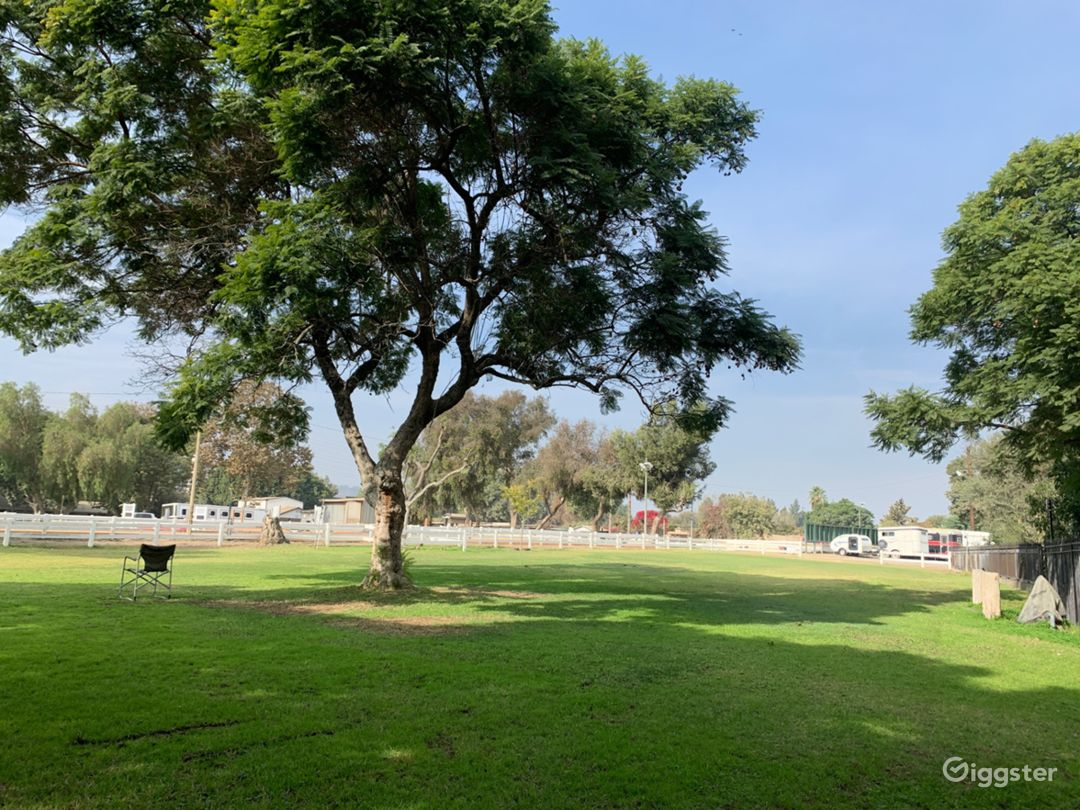 Premier Equestrian Facility Heart of Los Angeles Photo 4