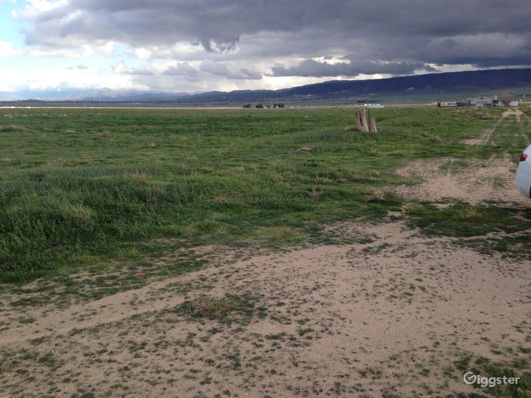 Landing Strip- Desert Photo 2