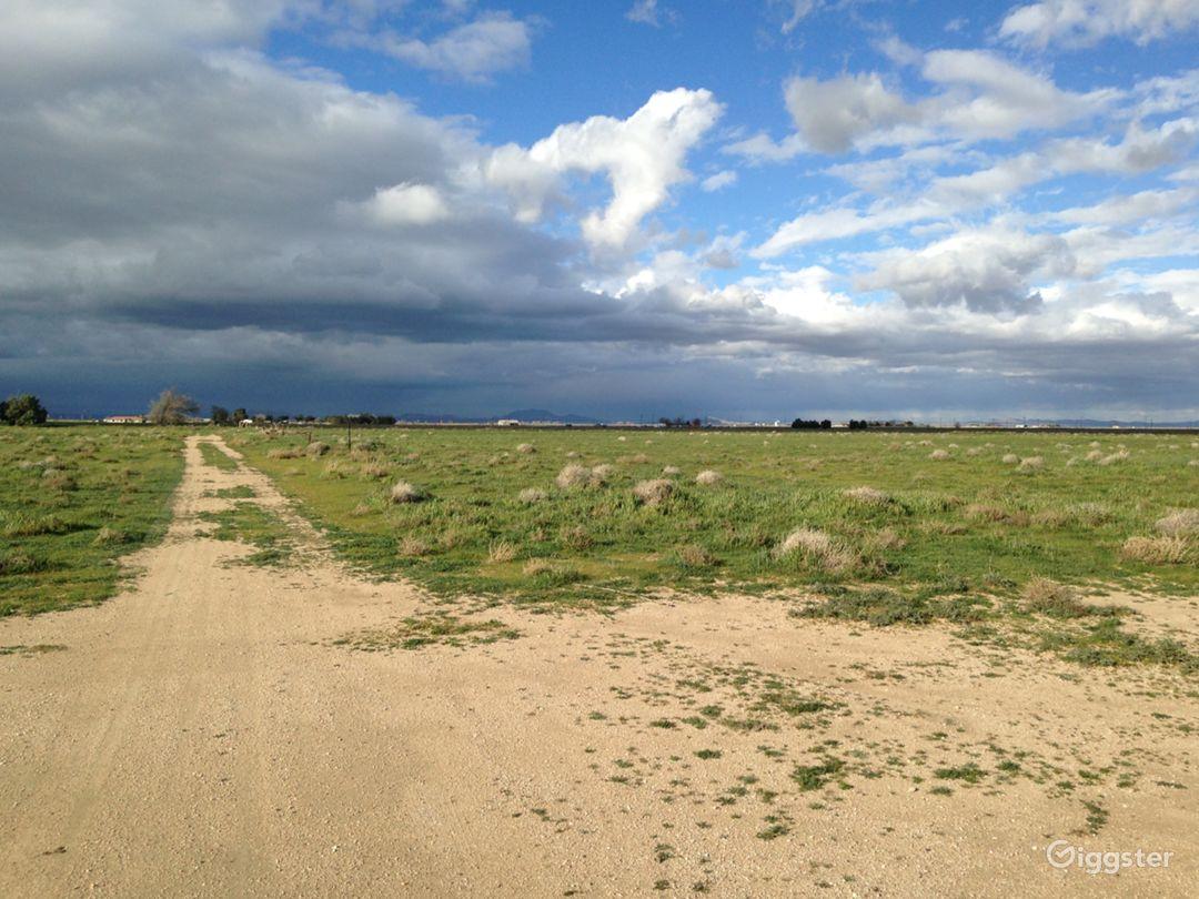 Landing Strip- Desert Photo 4